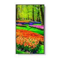 NEC M551 55 inch 4K Ultra High Definition Commercial Display / 3840x2160 / 500 cd/m2/ 24/7 3Yr warranty