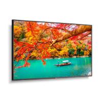 NEC MA551 43 inch Wide Color Gamut 4K UHD Professional Display/ 3840x2160 / 500 cd/m2/ 24/7 3Yr warranty